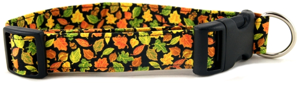 Fall Leaves Dog or Cat Collar